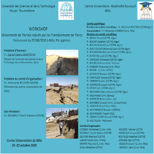 Workshop on landslides