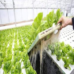 كفاءة استخدام الموارد المائية في القطاع الزراعي كمحدد للتنمية الزراعية المستدامة